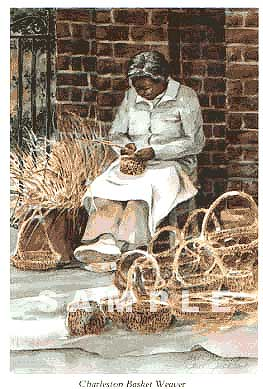 Charleston Basket Weaver